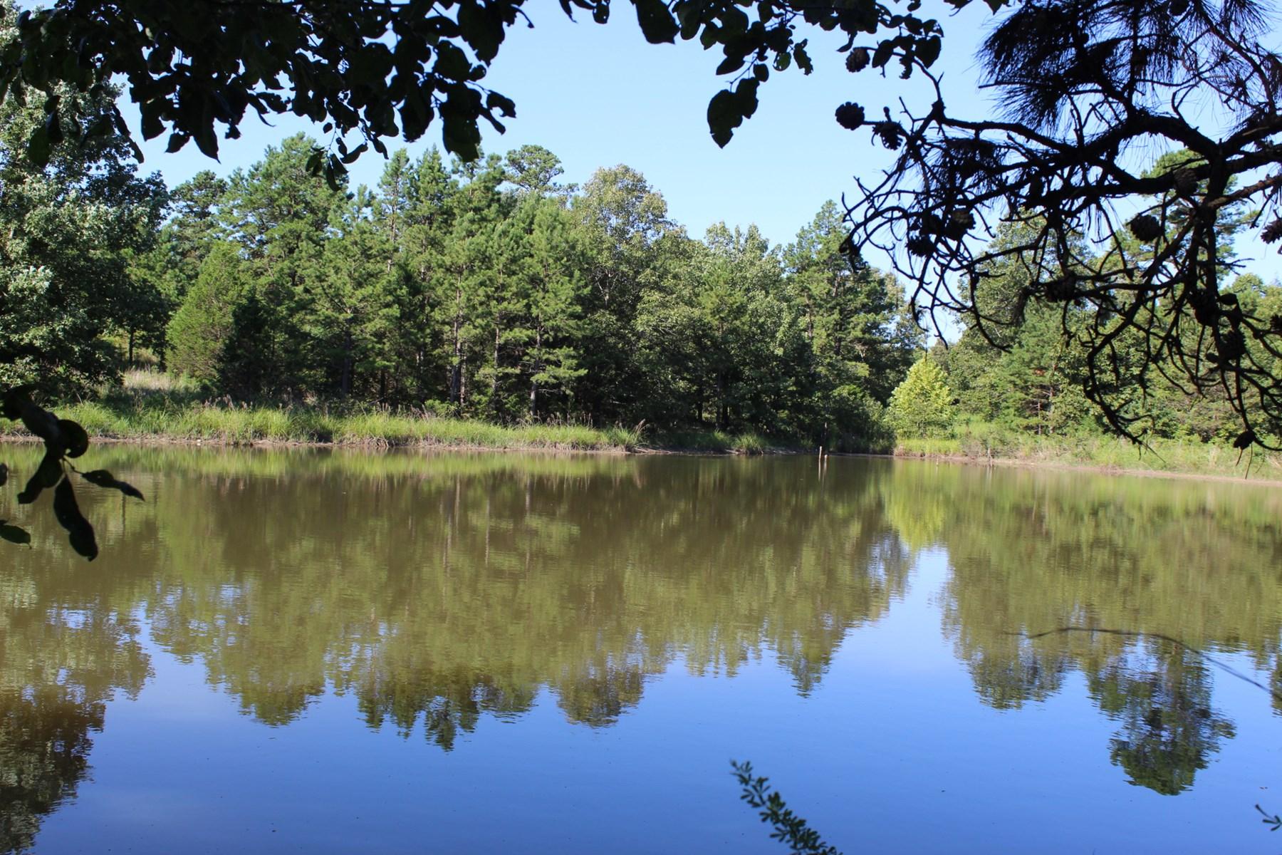 Acreage for sale in Izard County Arkansas