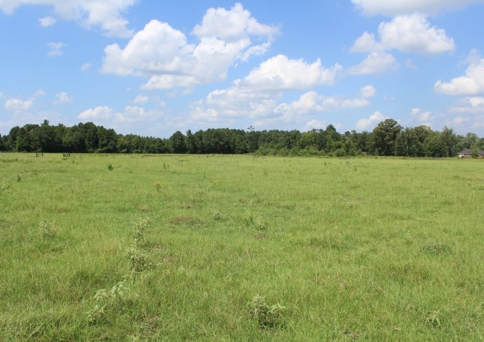 CATTLE RANCH / RECREATION IN MARION COUNTY, TEXAS