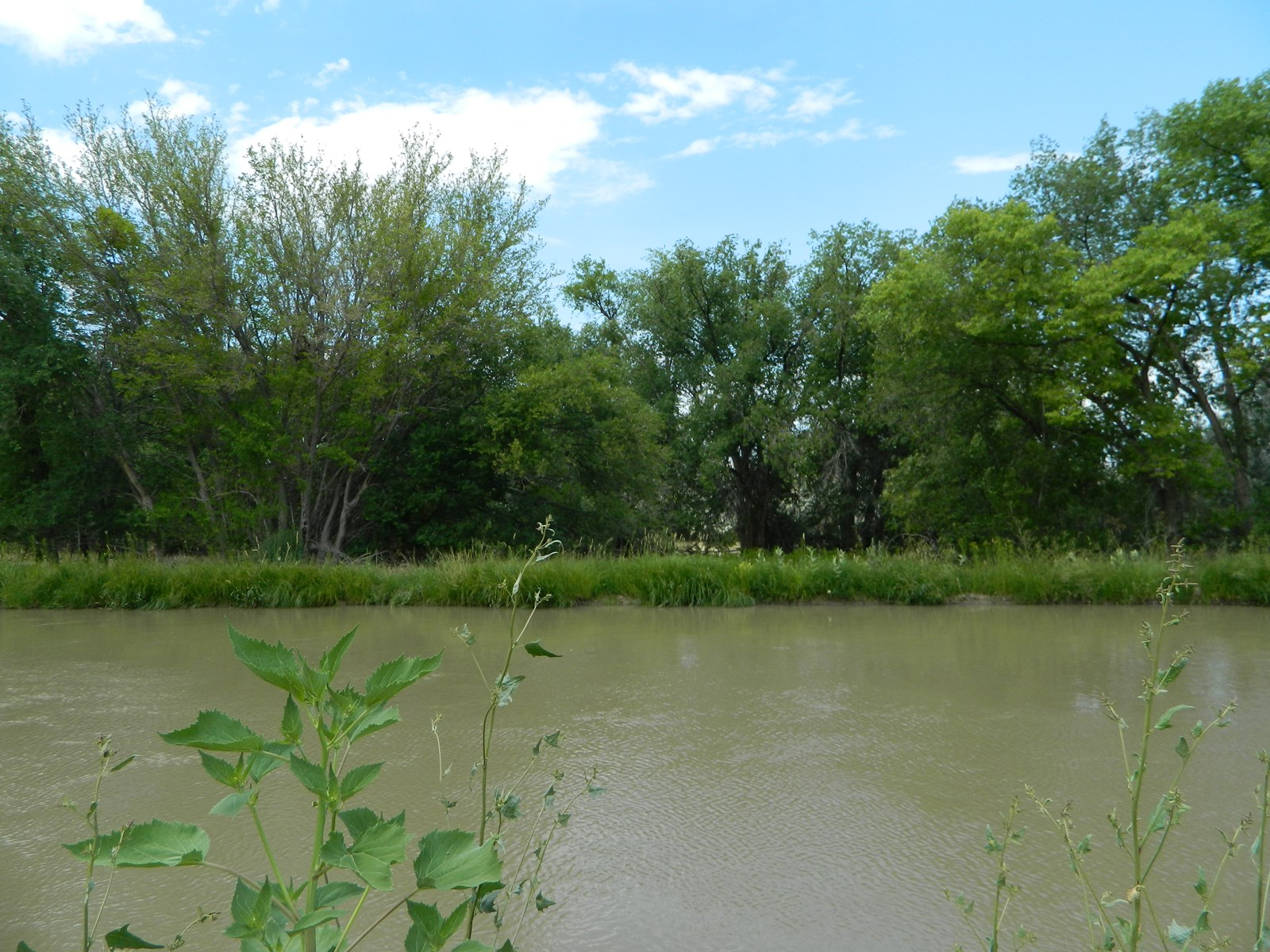 Riverfront Land for sale in Colorado