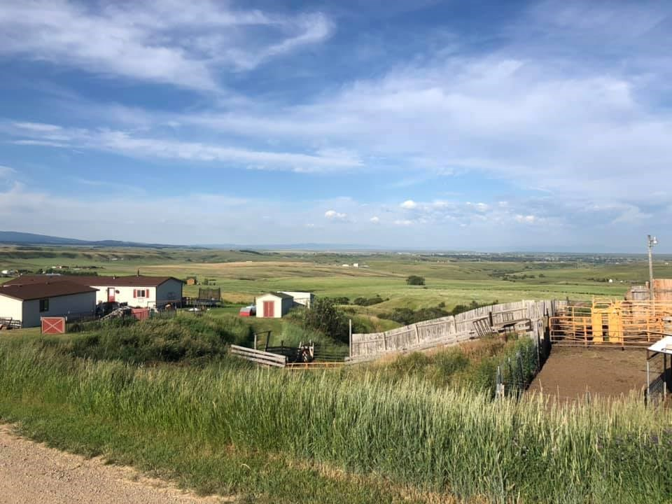 Central Montana Home on 20 acres for Livestock