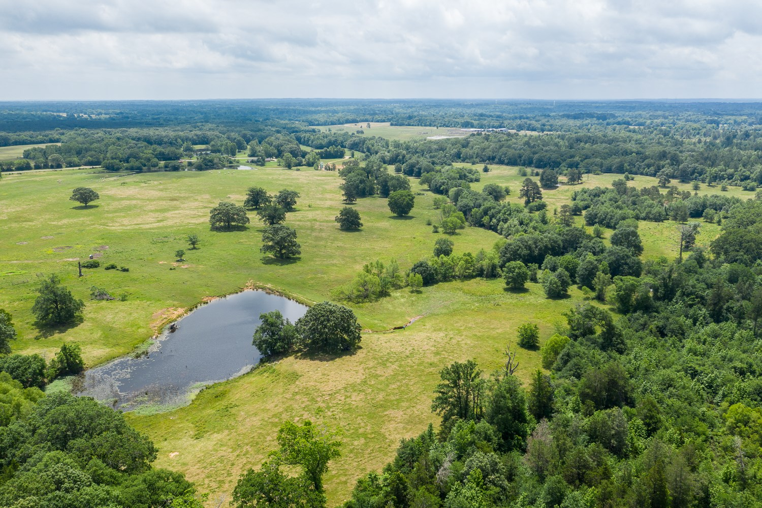 Land Lakes Fishing Hunting Grazing Land For Sale East Texas