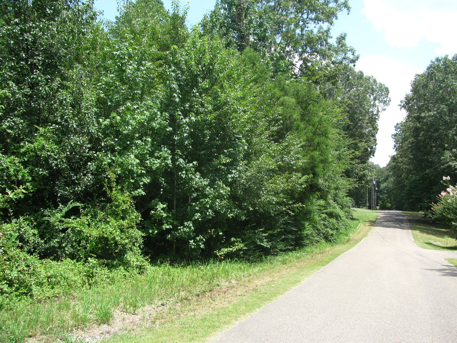 BUILDING LOT FOR SALE IN SAVANNAH, TN, LAND TO BUILD ON