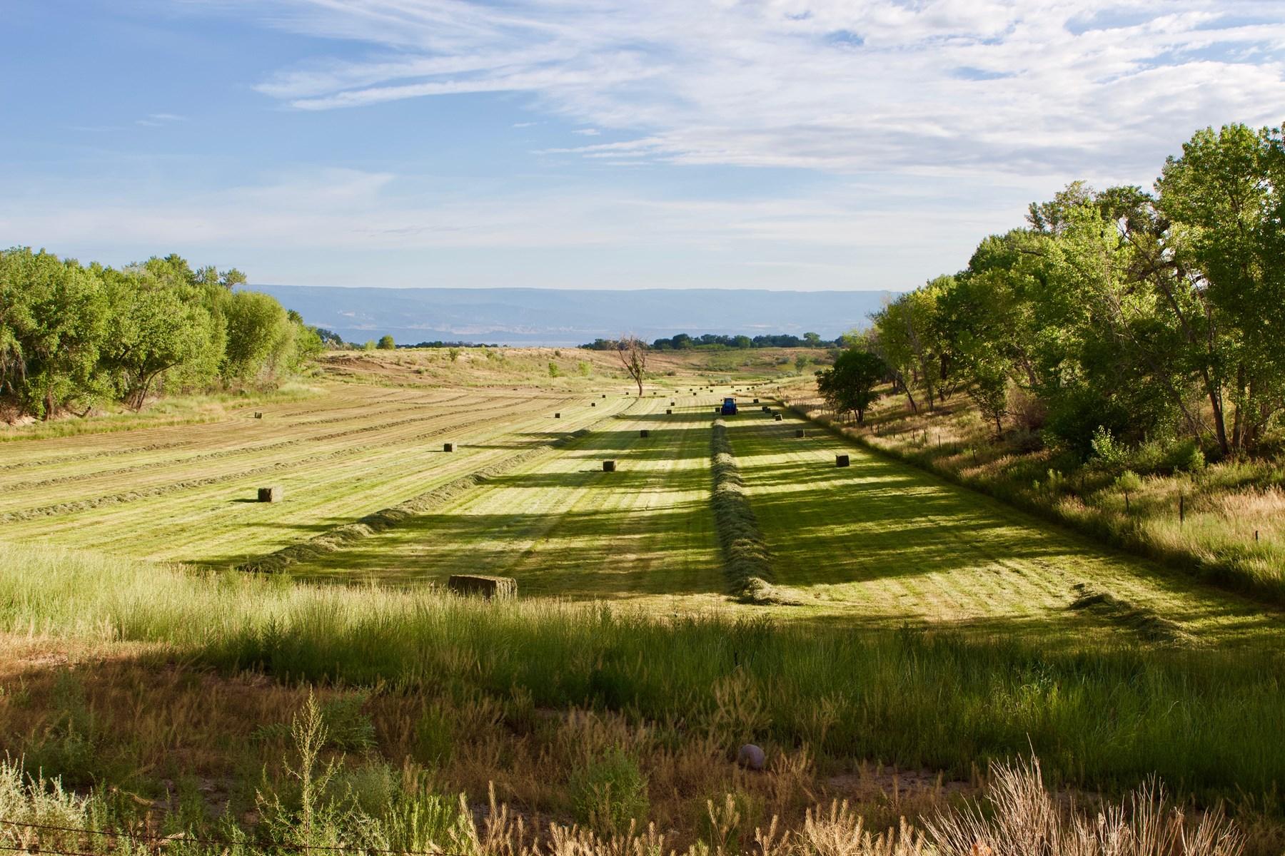 Olathe hay farm for sale