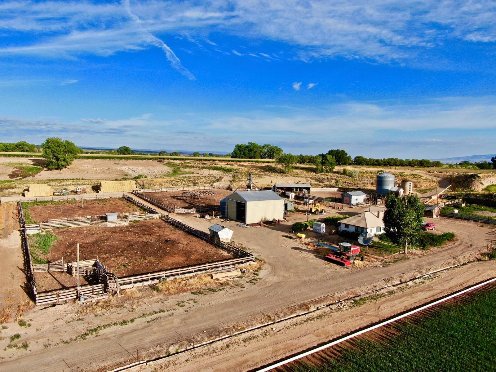 cattle finishing property