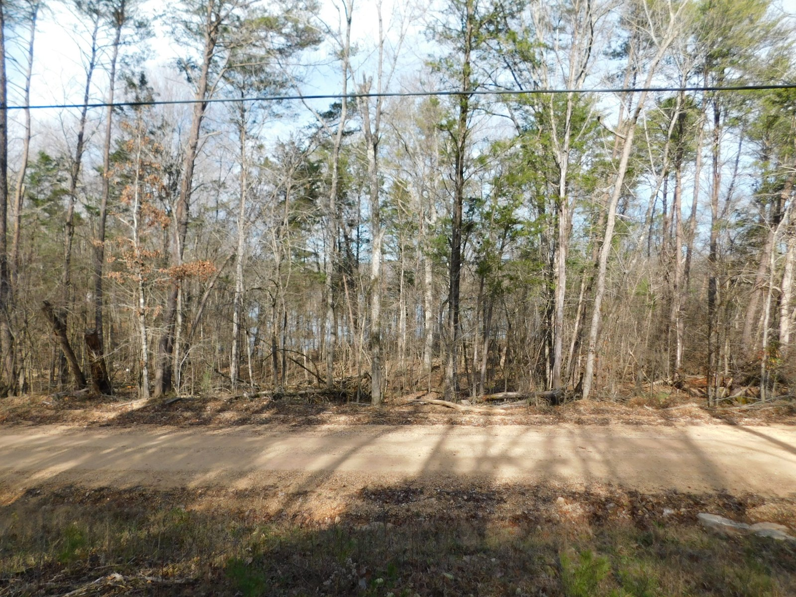 1AC LAND NEAR THE TN RIVER
