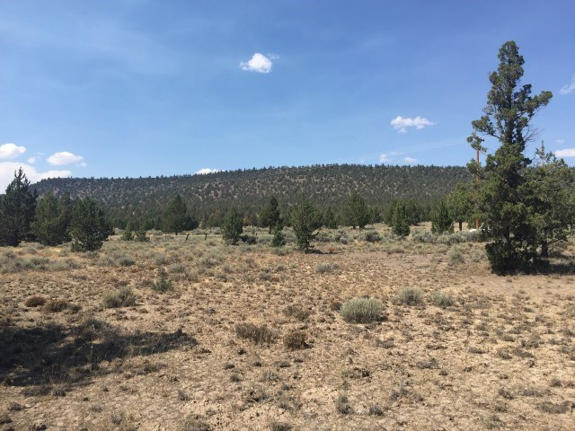 Vacant Land w/Well For Sale, Modoc, Alturas, CA