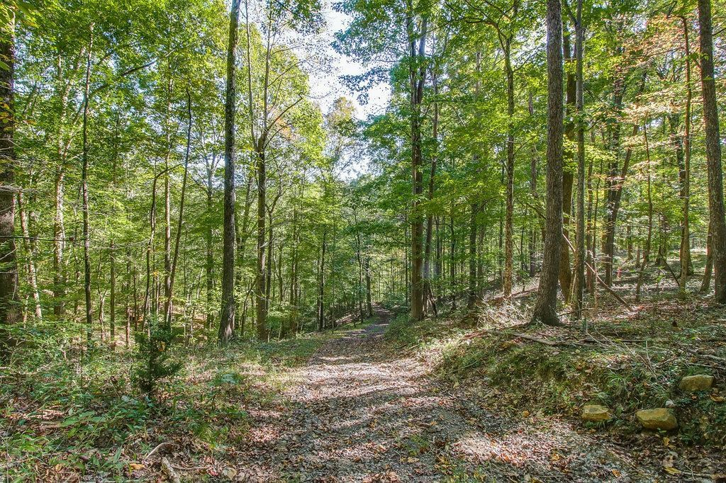 Private Hilltop Land For Sale in Franklin