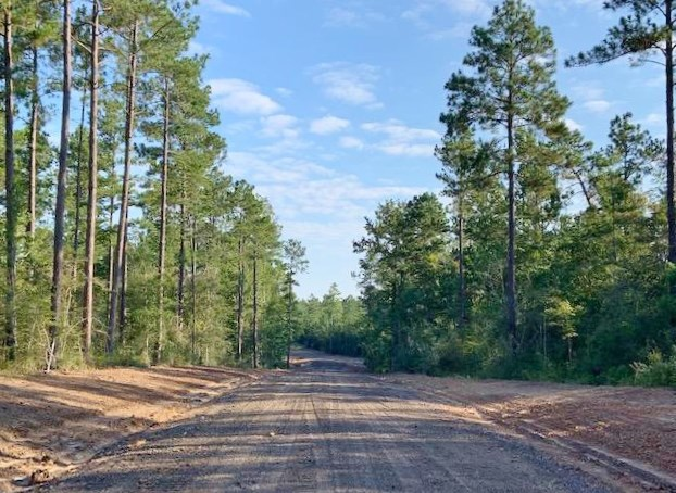 21.105 Acre Residential Development Land for Sale Sumrall MS