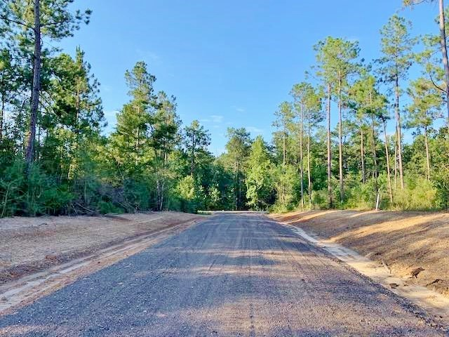 20.21 Acre Residential Development Land for Sale Sumrall MS