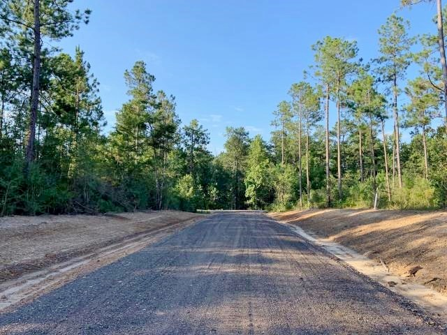 23.4 Acres Residential Development Land for Sale Sumrall MS