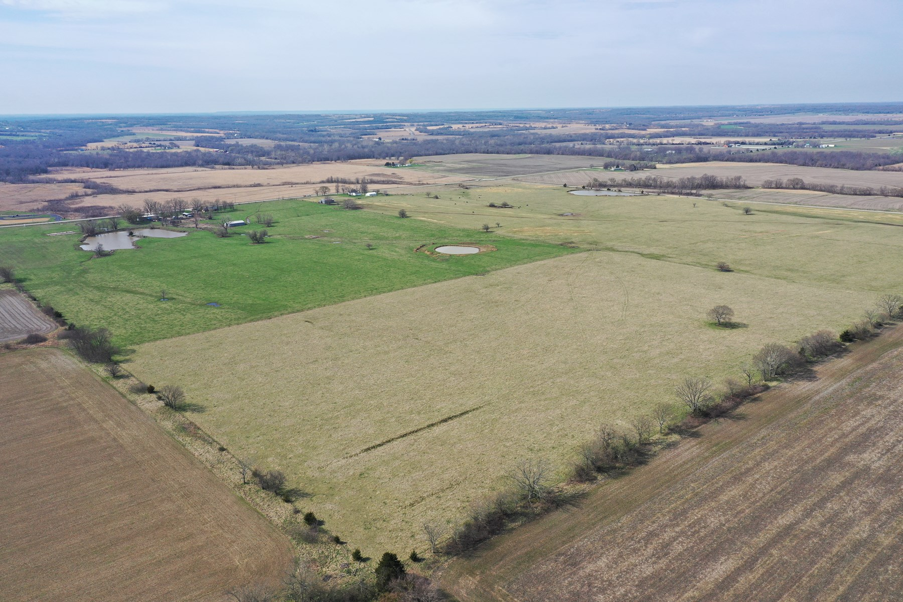 Your 185+/- acres - Cattle/Hay Income, Ponds, Waterfowl