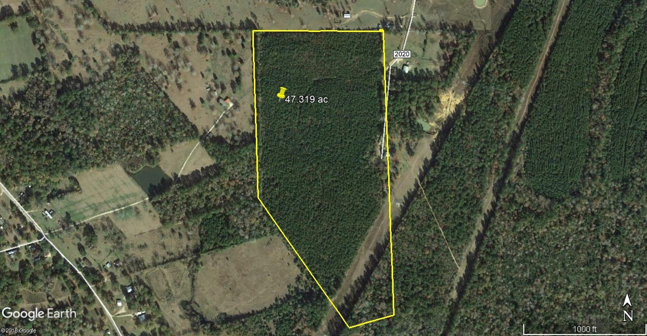 47.319 ACRES OF LAND JUST EAST OF NEWTON TEXAS FOR SALE