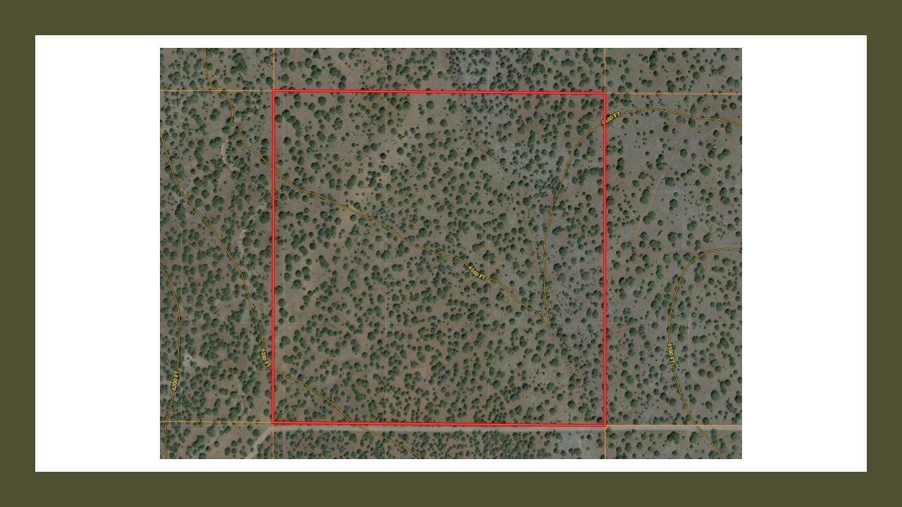 Mountain Property, Coconino County, Westwood Ranches