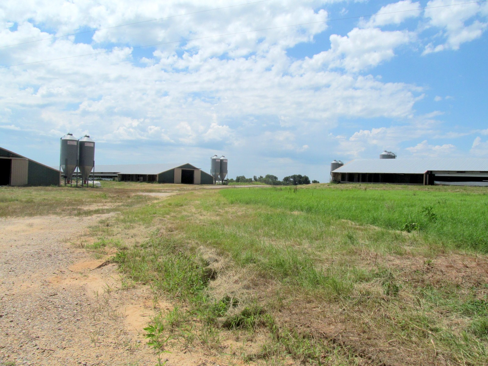 POULTRY BROILER FARM FOR SALE EAST TEXAS - HOPKINS COUNTY TX