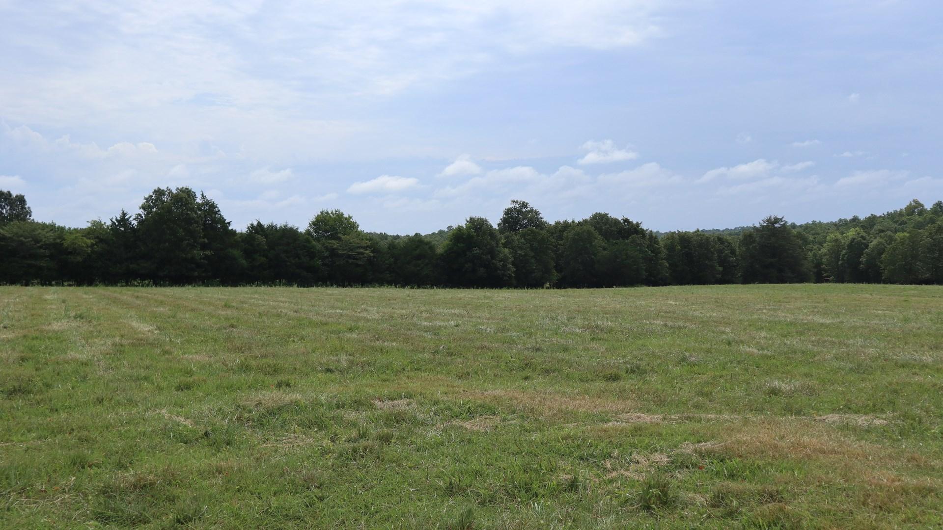 Ozarks Cattle Farm for sale Salem Arkansas