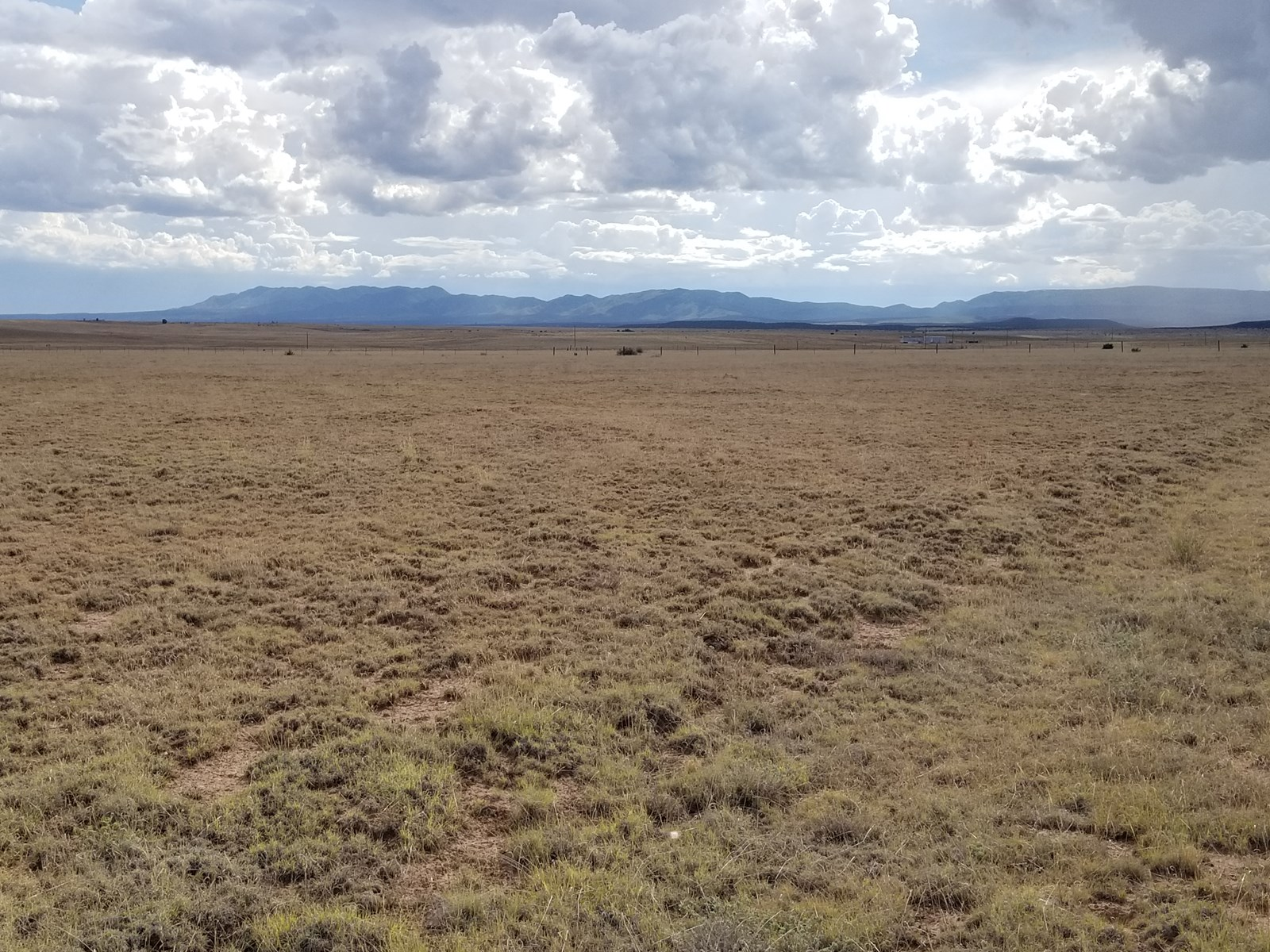 Central NM Acreage For Sale Estancia Valley