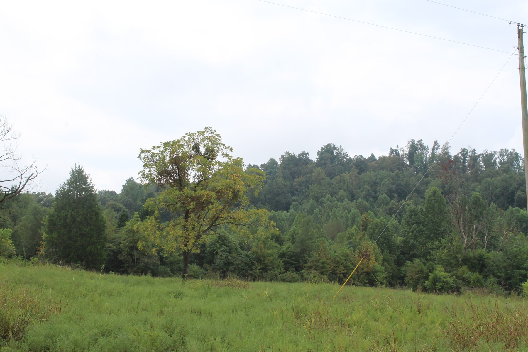 60.21 Acres of Warren County Hunting Land with Building Sites