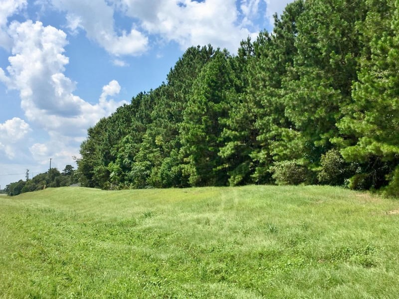 Evelyn Gandy Parkway (Hwy 42) Commercial Land for Sale SW MS