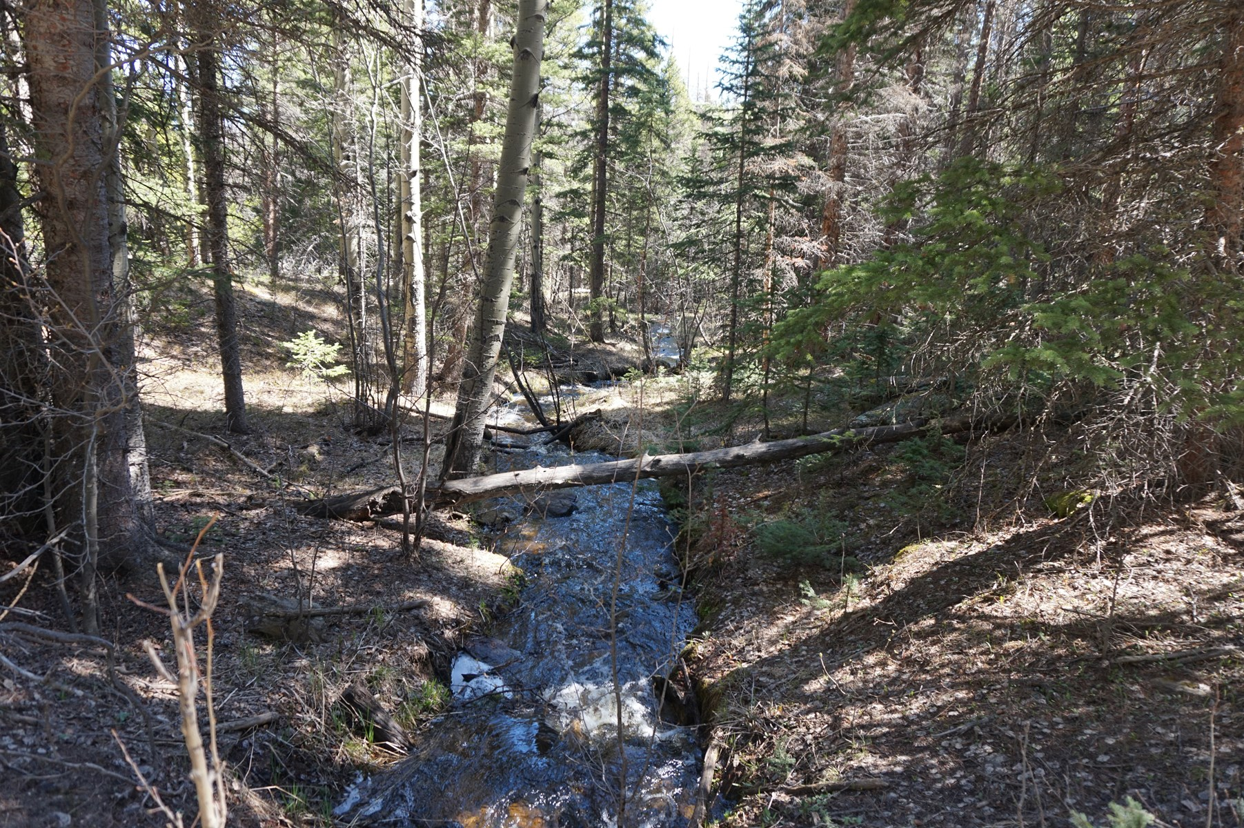 Colorado Hunting Property/Cabin For Sale, Elk, Deer