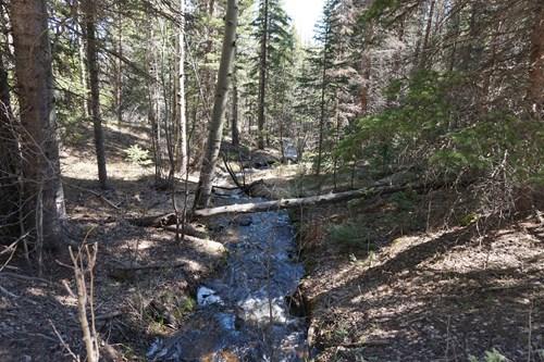 Colorado Hunting Property/Cabin For Sale, Elk, Deer