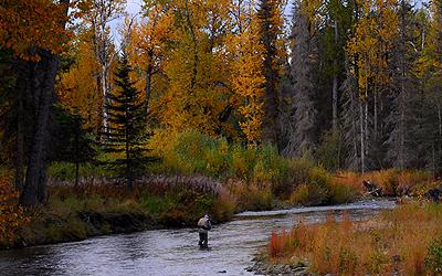 Divide-Colorado-fishing-ai