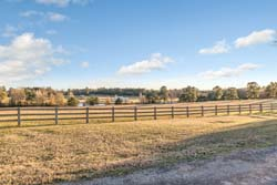 TX Ranches for Sale