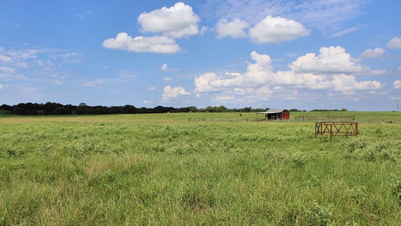 rural acreage for sale montalba tx | east tx horse property